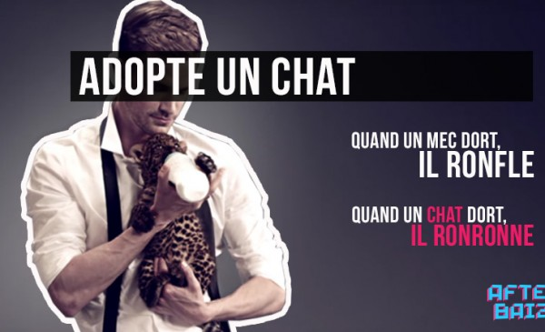 Adopte un chat, plutôt qu'un mec
