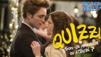 Quizz: suis-je attaché(e) ou amoureux(se) ?