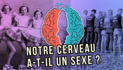 Notre cerveau a-t-il un sexe ?